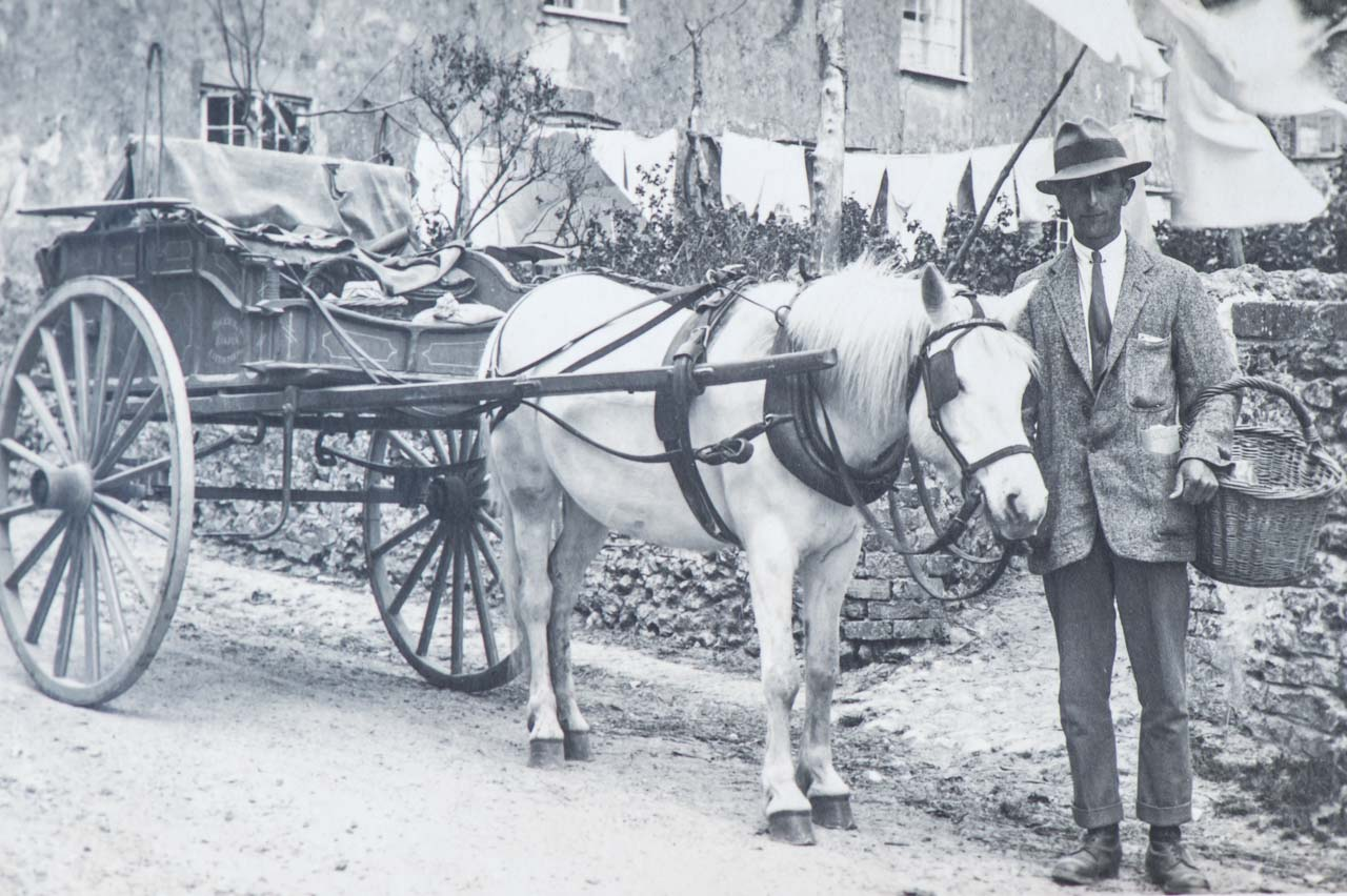 Horse and Trap at The Rocks c1920s