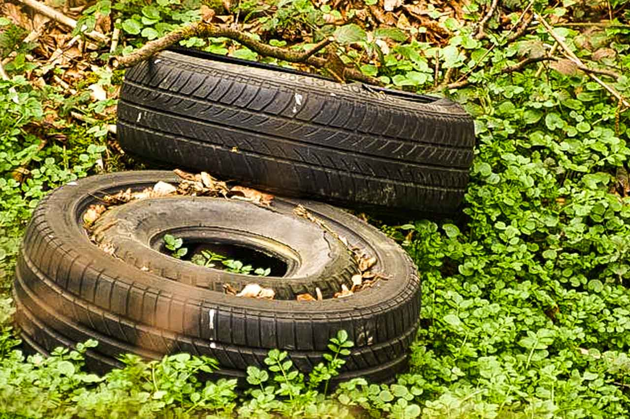 Tyres, an awful sight in our hedgerows