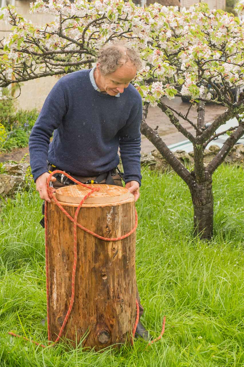 Matt Somerville preparing to raise the bee-kind log hive