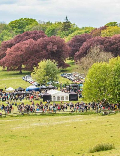 Dorset Knob Throwing 2019: An overview of the site and some of the thousands of visitors who enjoyed a great day