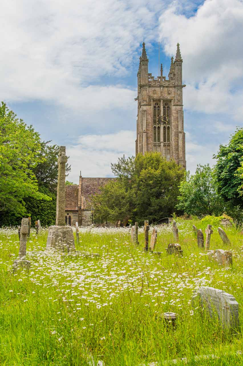 The front of the church with Ox-eye daisies in the forground