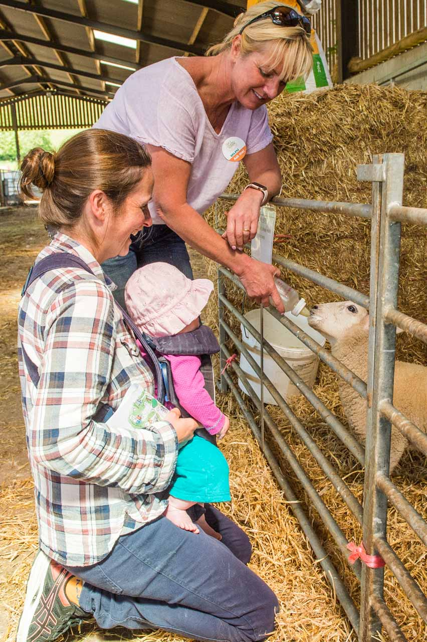 Open Farm Day 2019 Jenny and daughter watch Helen feed an orphan lamb