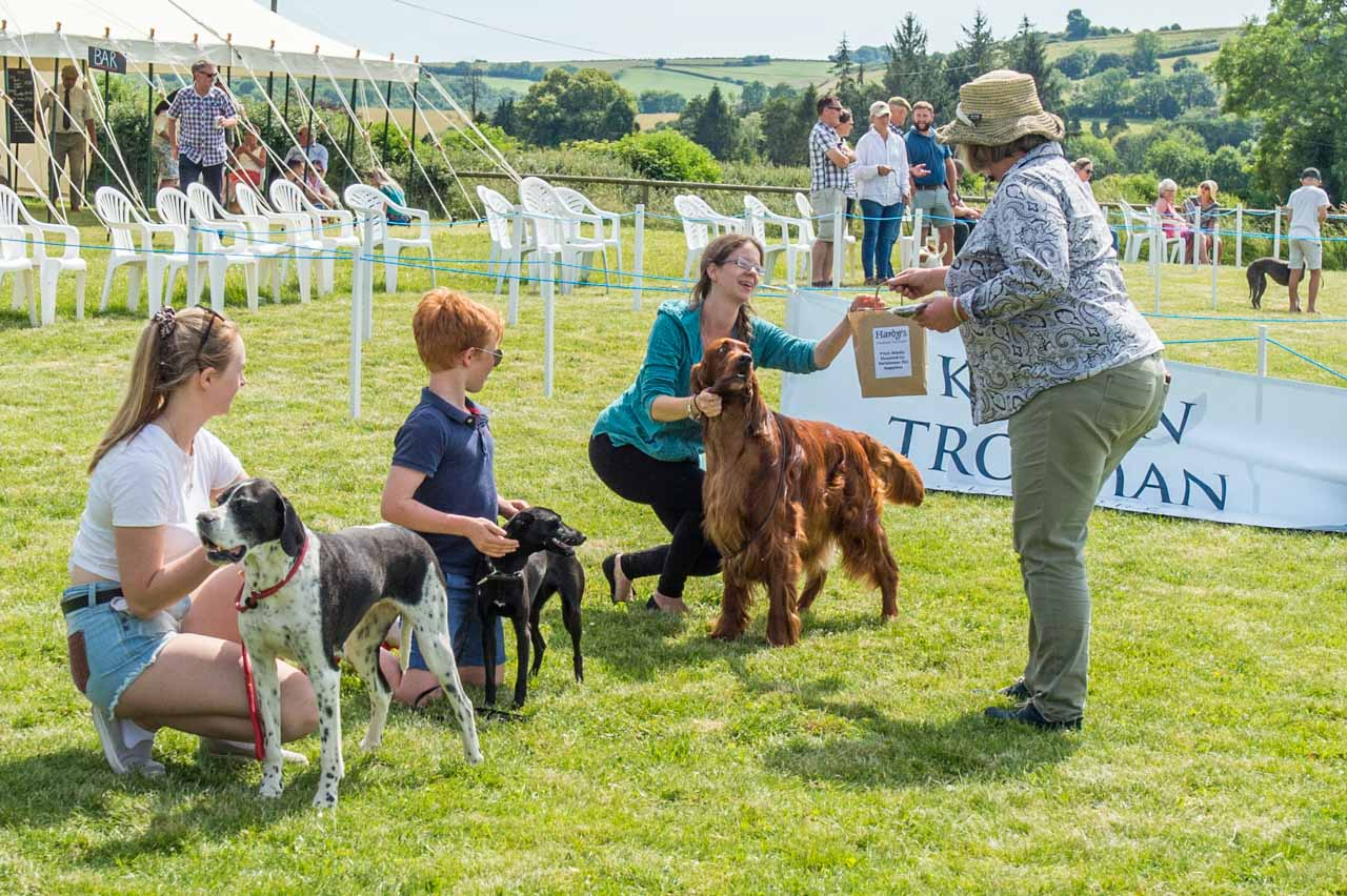 The 2019 Dog Show Best in Show Family section