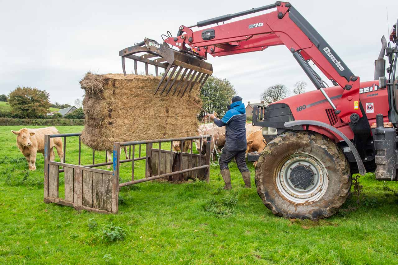 Pearce providing organic hay to supplement grass feed in Kennel Lane field
