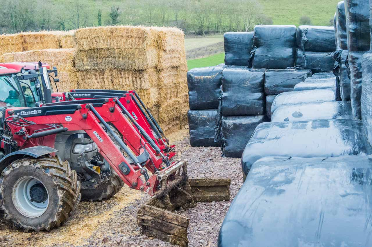 Some of the straw and hay needed for the winter