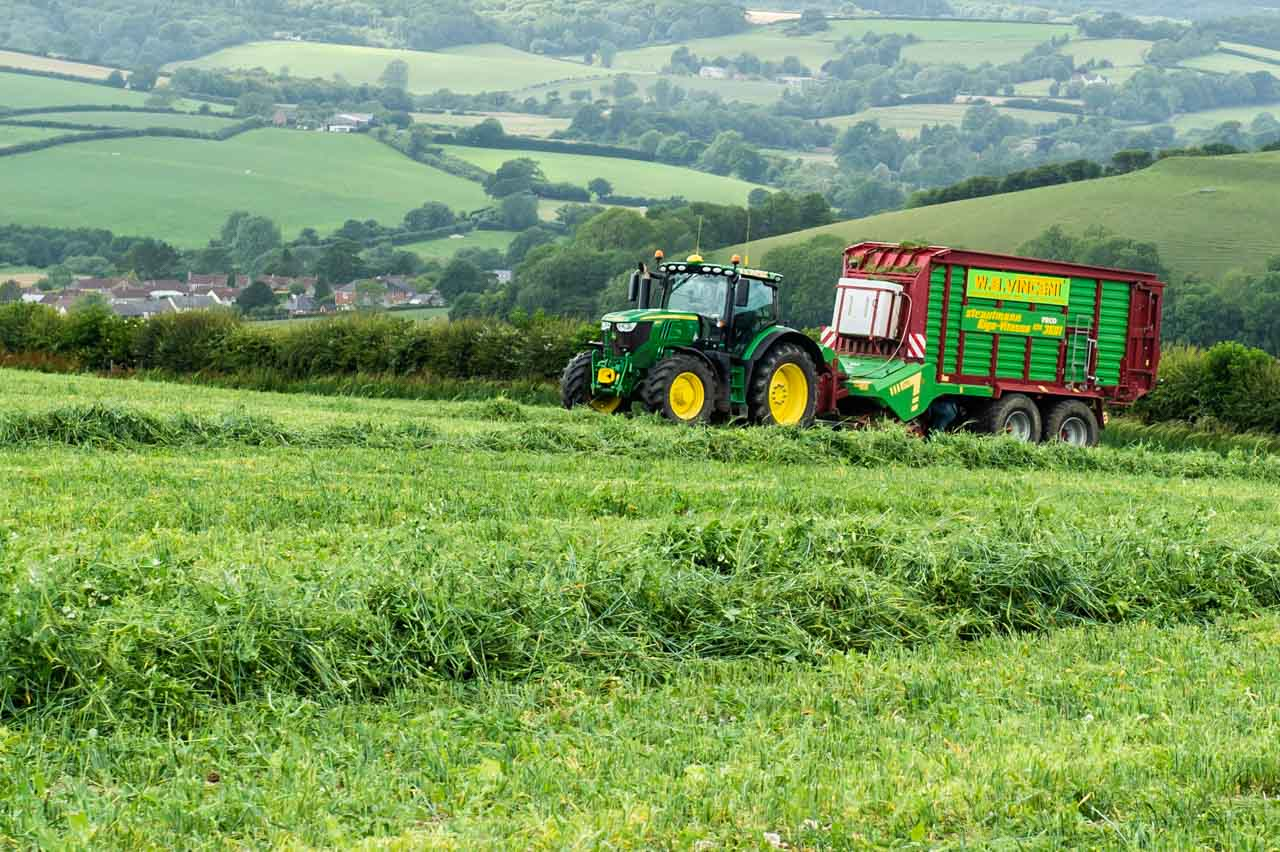 A mixed crop of Barley and Peas being harvested