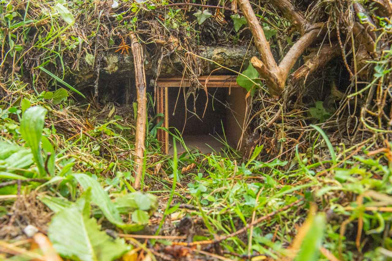The entrance to a Hedgehog House, located in a compost pit in near the church