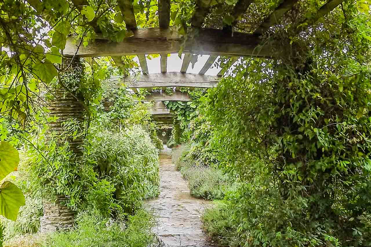Herbie's photos: an Ivy Club trip and the pagoda at Hestercombe Gardens, Somerset