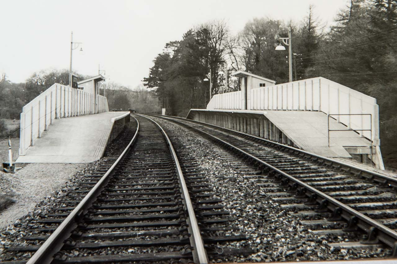 The two platforms of Cattistock Halt, one of which was used in the building of Chetnole Halt