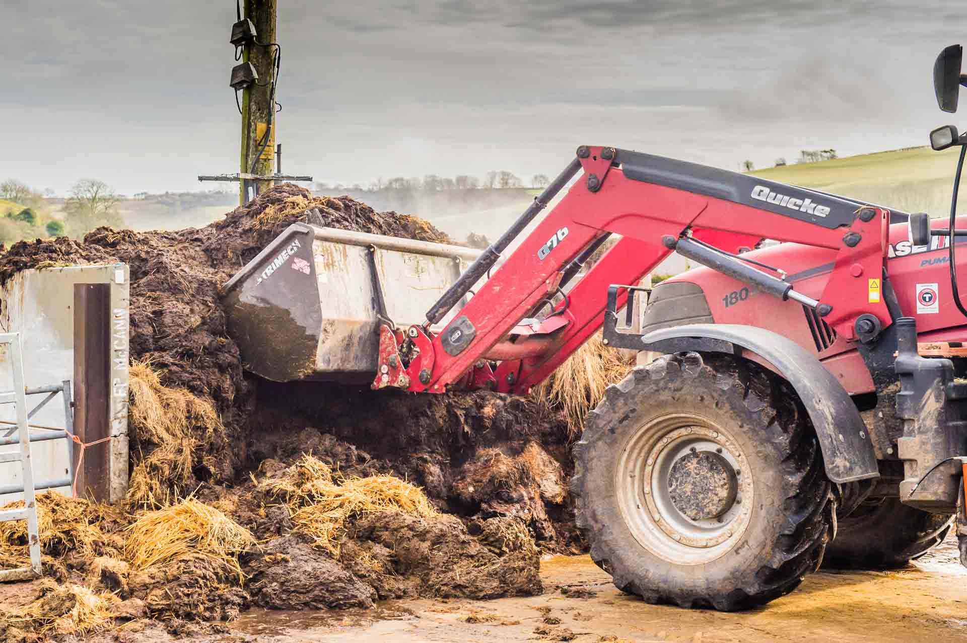 Muck from the daily clean out is stored in bunkers, before being spread over the fields in the Spring