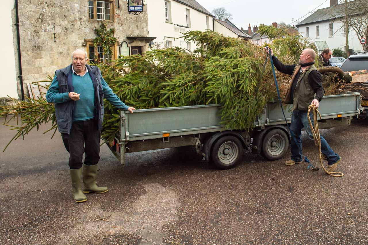 Ed arrives with his donated tree
