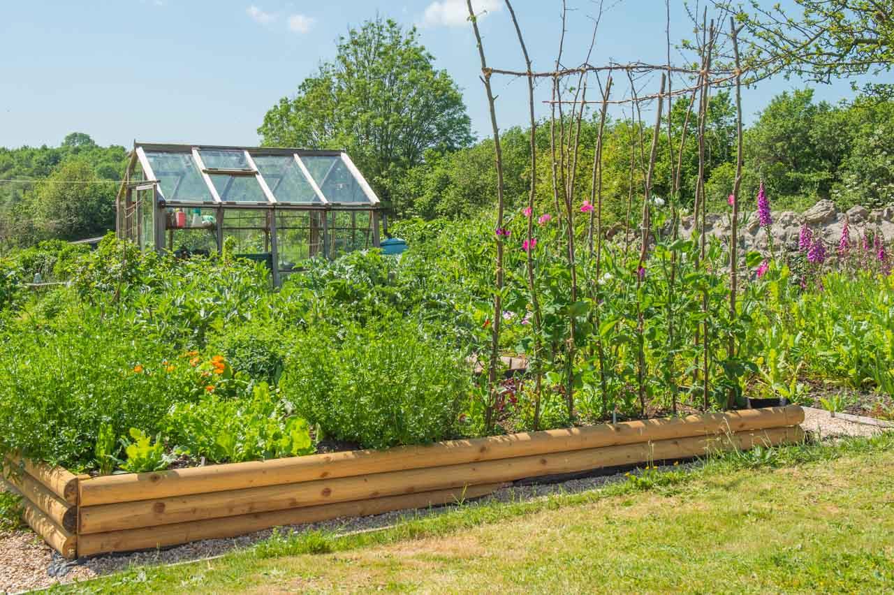 10. Georgina: A well stocked vegetable garden, using raised beds