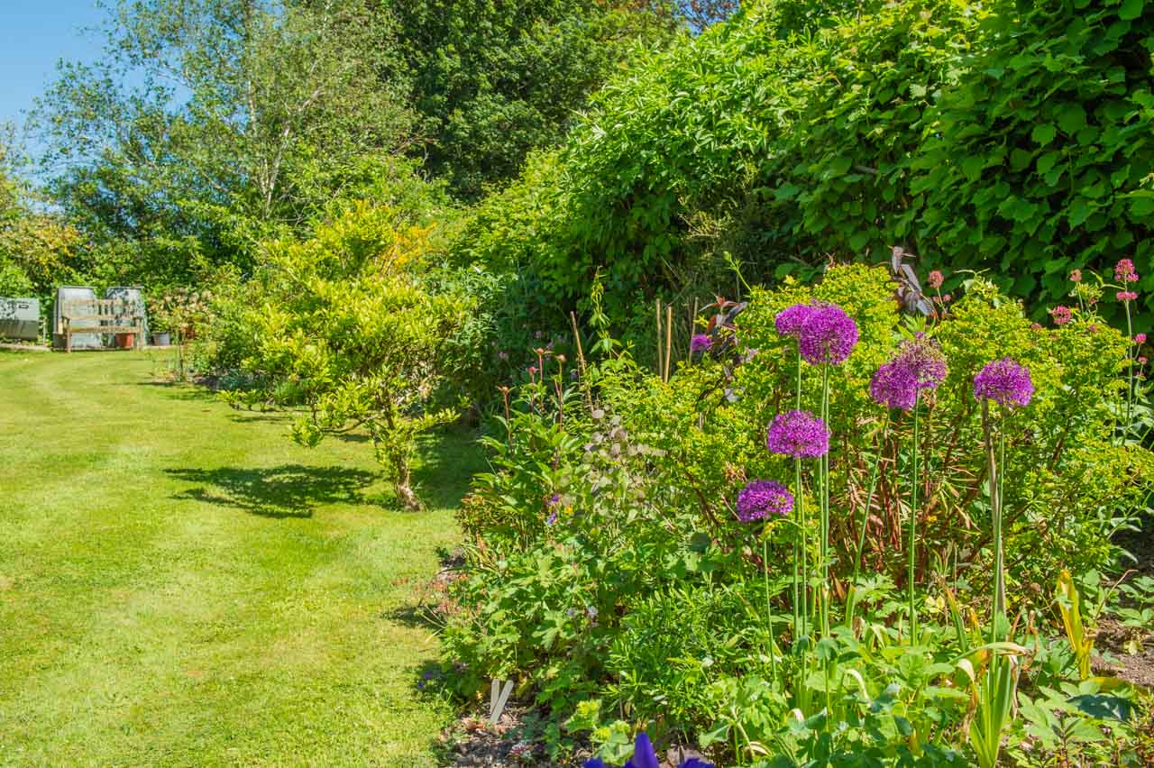 12. Nina and Mike: A variety of plants and bushes in the East border