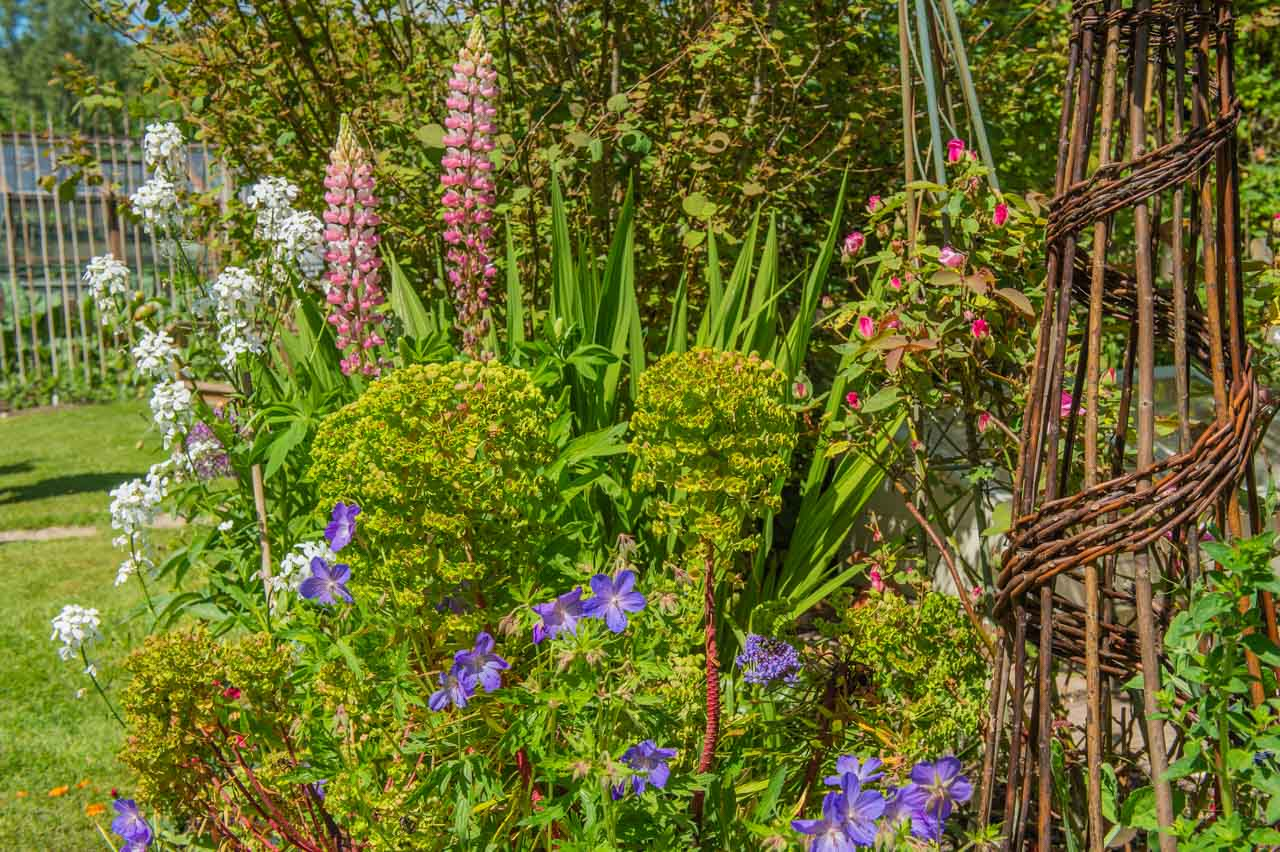 12. Nina and Mike: Another example of a superb variety of flowers in the garden's borders