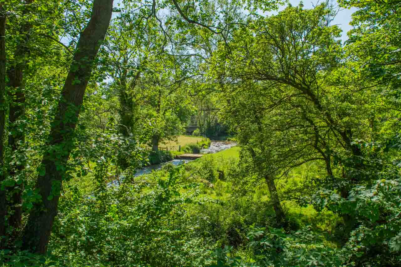 15. Debbie and Geoff: A garden of views. At the bottom of the paddock the Frome meanders its way through the village