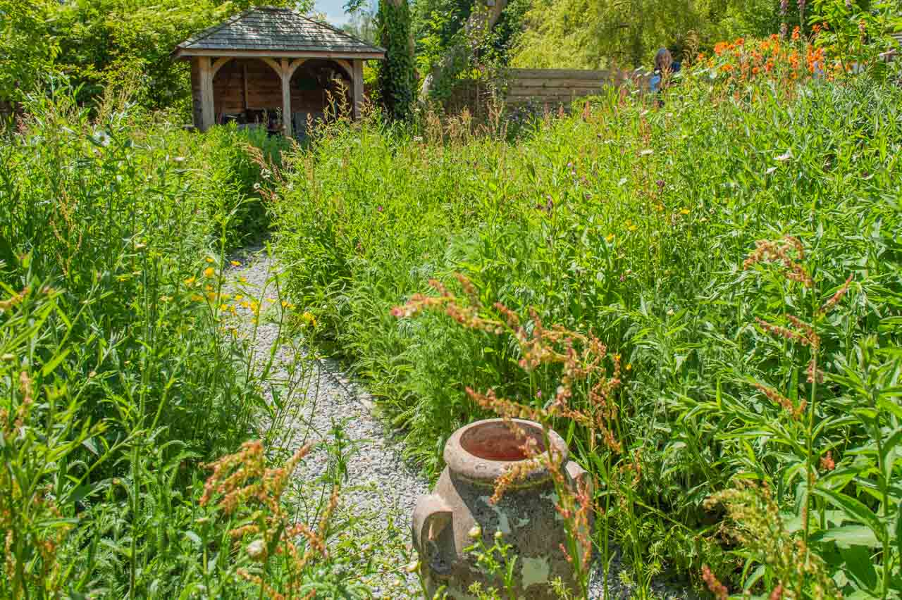 6. Jo: Another urn on a winding path of this totally natural garden