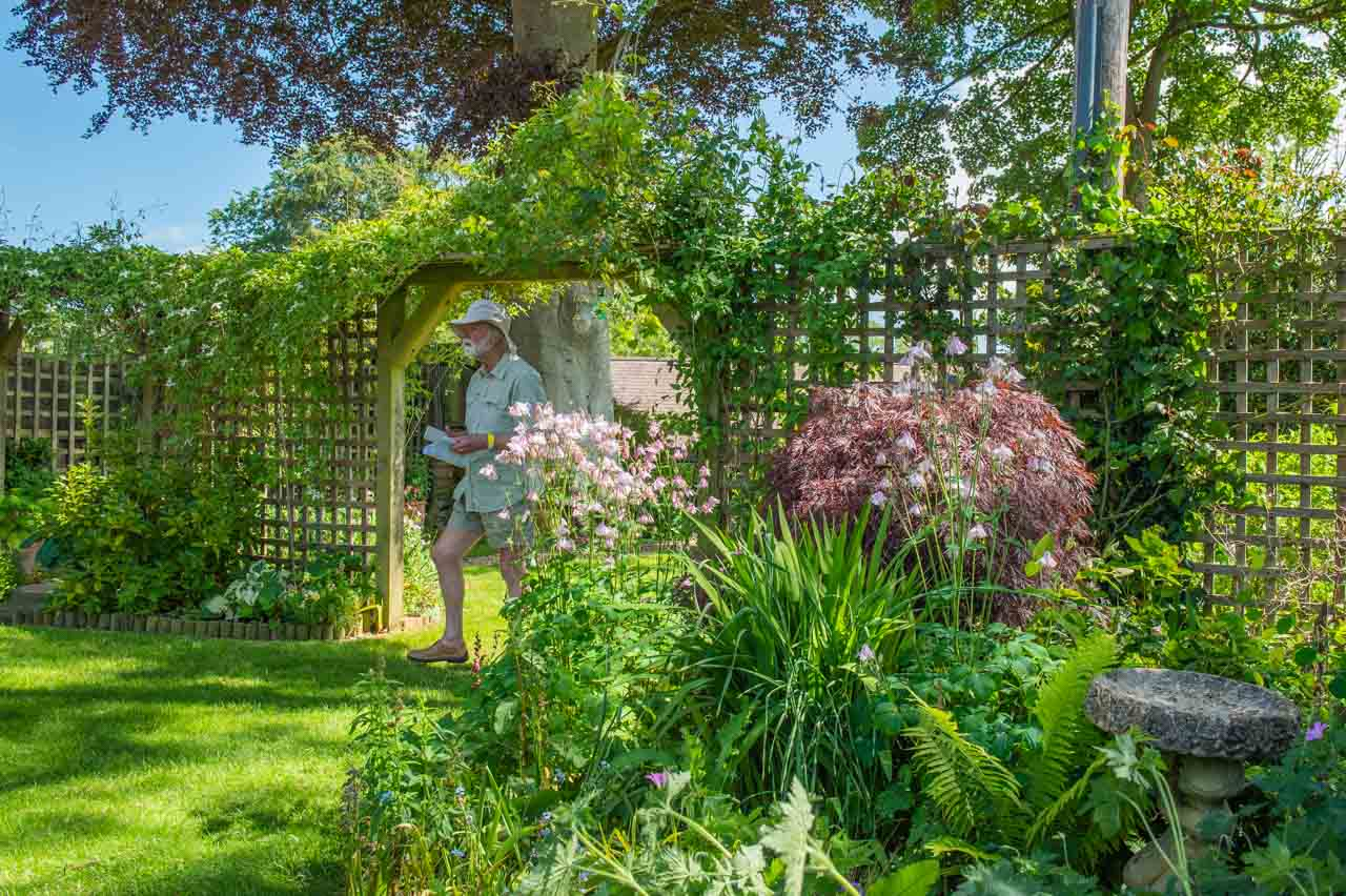 9. Cathy and Phil: Clematis montana covers the garden's arch