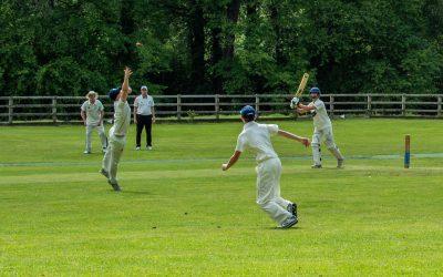 The Cattistock and Symene Cricket Club