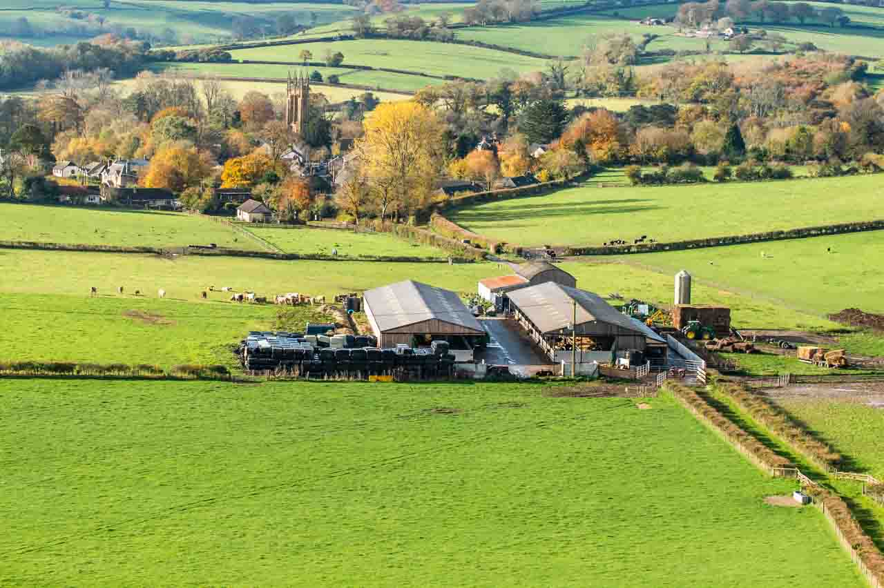 Holistic Grazing: Some of the Manor Farm fields subject to rotation