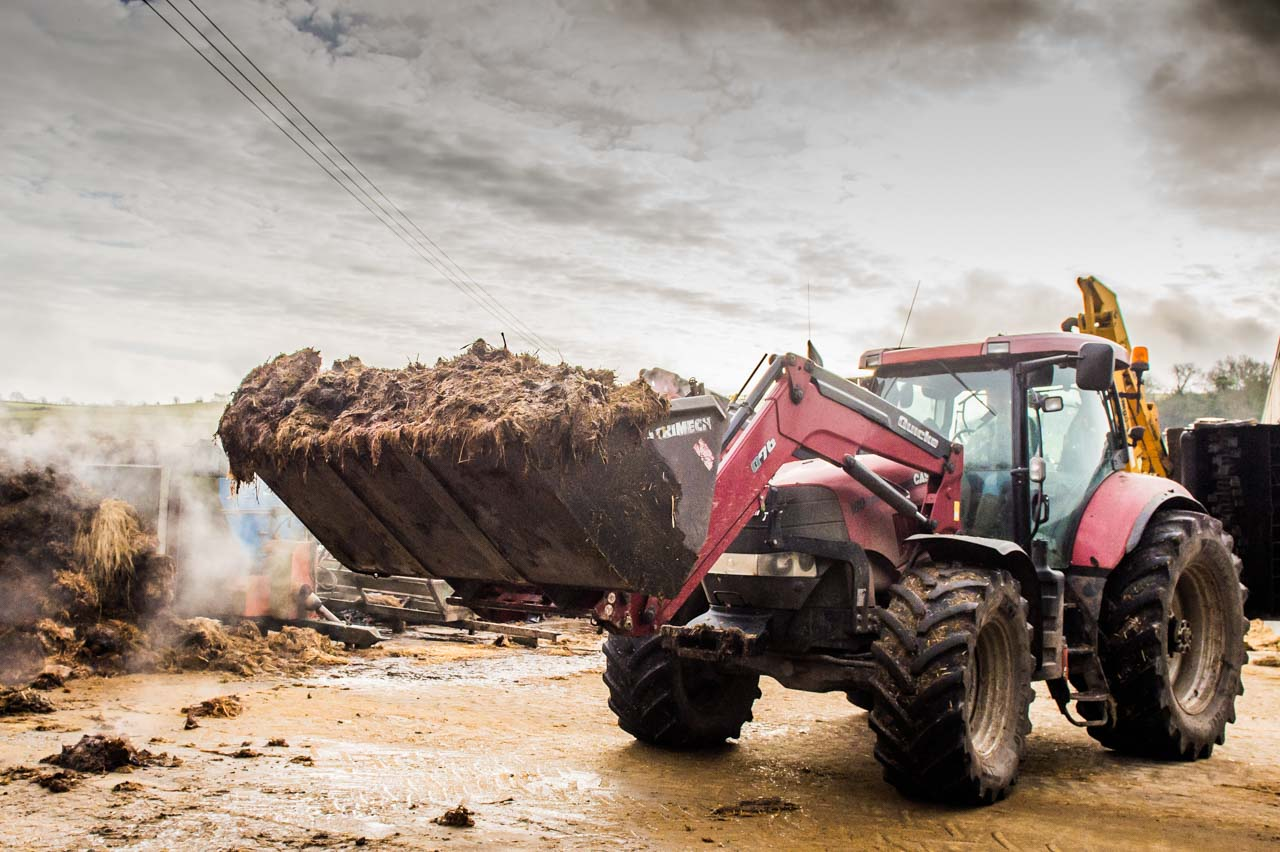 Integrated Nutrient Management: Muck being readied for spreading on the fields