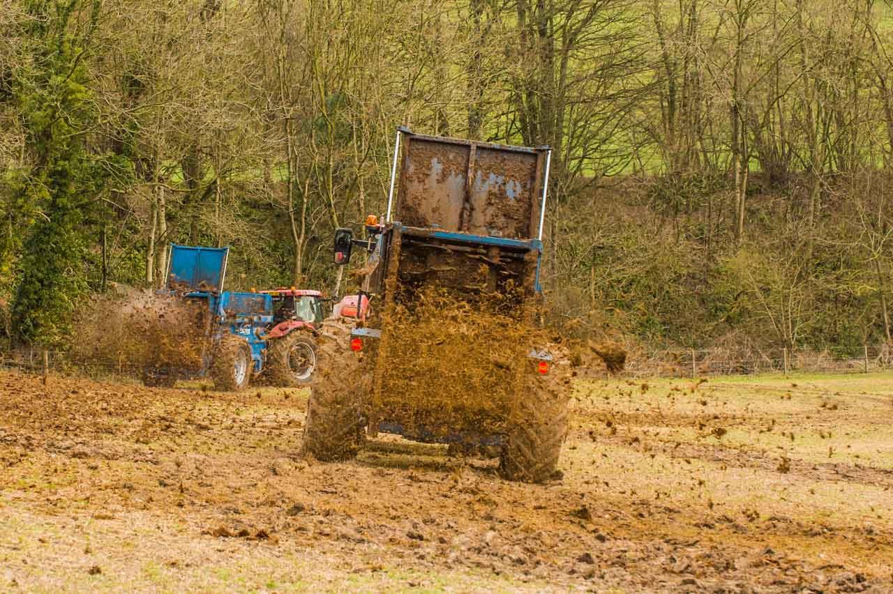 Organic Status: Muck spreading provides the necessary fertiliser for the next crop