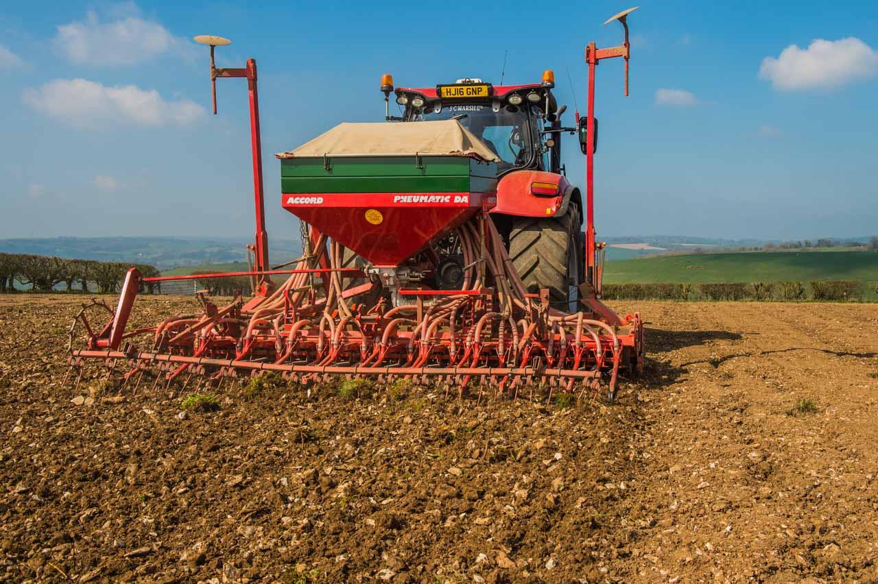 Bi cropping: Barley and Peas being sown