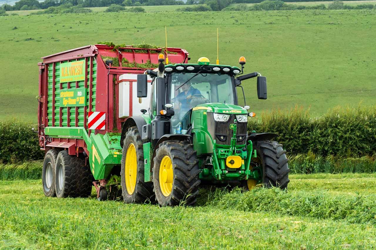 Bi cropping: Barley and Peas being gathered